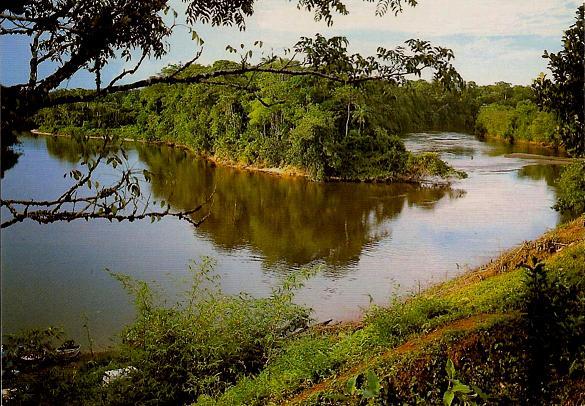 AU VILLAGE DE CACAO, la rivière