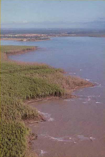 Kourou, vue aérienne